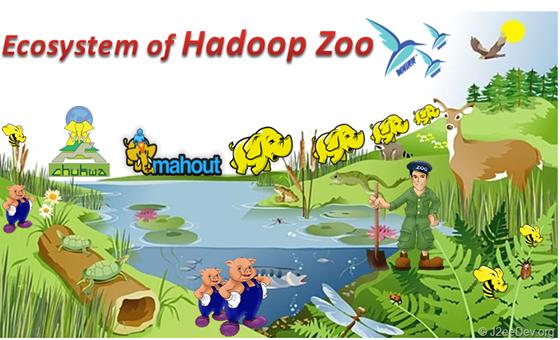 Hadoop Ecosystem & Hadoop Distributions   Igfasouza com
